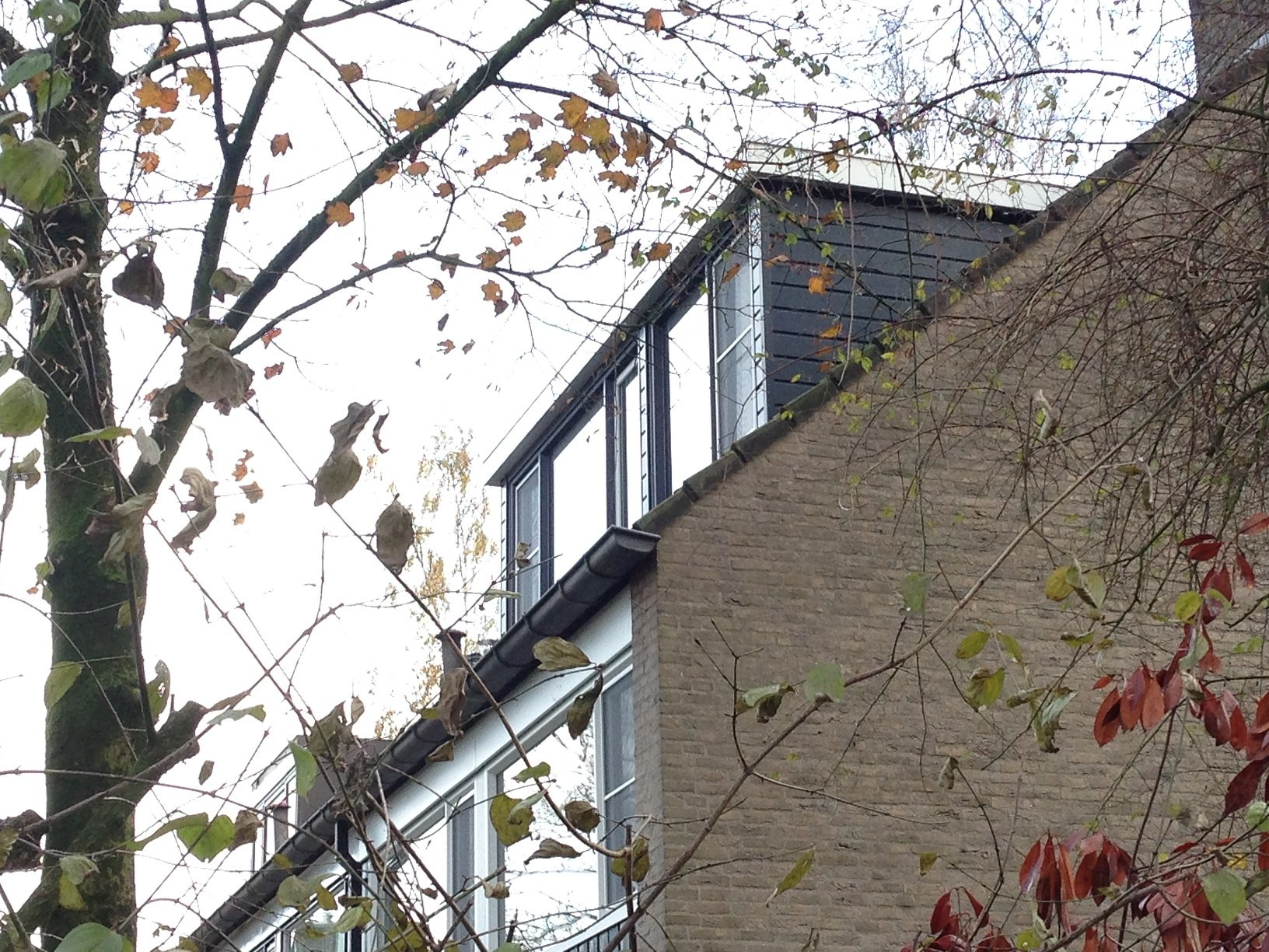 Traditionele dakkapel en kozijnen gemonteerd te Leersum.
