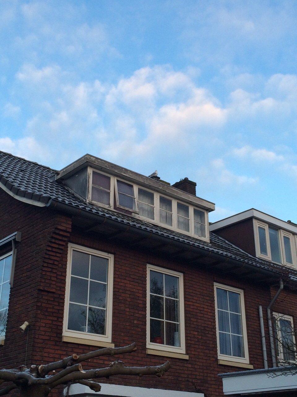 Dakkapel renovatie te Utrecht.